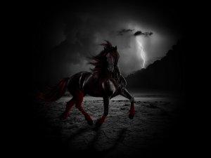 лошади тени ночь  № 359578  скачать